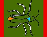 Desenho Barata pintado por luamcc