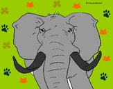 Desenho Elefante africano pintado por leilla