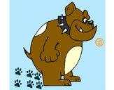 Desenho Bulldog inglês pintado por gyovanna