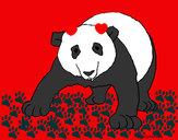 Desenho Urso panda pintado por SophiaSlo