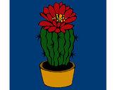 Desenho Cacto com flor pintado por RegisAssun