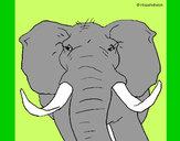 Desenho Elefante africano pintado por luzinda