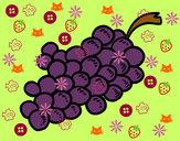 Desenho Uvas roxas pintado por DiegoPeira