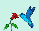 Desenho Colibri e uma flor pintado por daniel12