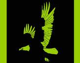 Desenho Águia a voar pintado por missmirim