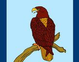 Desenho Águia num ramo pintado por missmirim
