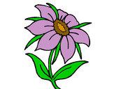 Desenho Flor silvestre pintado por luzinda