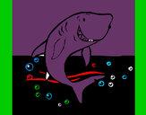 Desenho Tubarão pintado por VitoriaLi