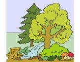 Desenho Bosque pintado por izisena