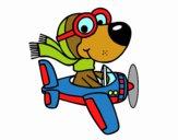 Cachorro aviador