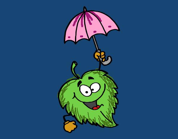 Folha com chapéu de chuva