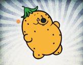 Sr. batata