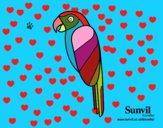 Pássaro Arara