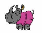 Rinoceronte-de-java