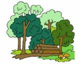 Desenho Bosque pintado por annycopque
