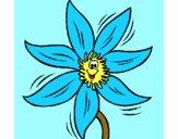 Flor 2a