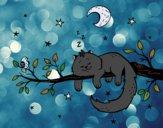 Desenho O gato ea luna pintado por Keda