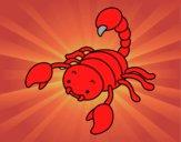Scorpius com picada elevado