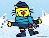 Um gato no inverno