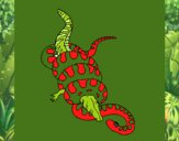 Anaconda e jacaré