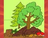 Desenho Bosque pintado por Dabejon