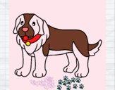 Cão pigmento