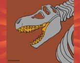 Esqueleto tiranossauro rex