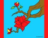 Desenho Flor de amendoeira pintado por marilurdes
