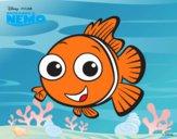 À procura de Nemo - Nemo
