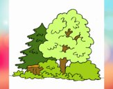 Desenho Bosque pintado por sonhadora
