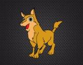 Cão rafeiro