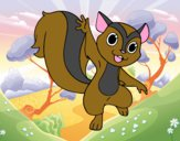 Esquilo saudando