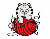 Gato com un novelo de lã