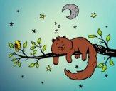 Desenho O gato ea luna pintado por sonhadora
