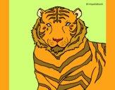 Desenho Tigre pintado por marilurdes