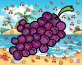 Desenho Uvas roxas pintado por Renatacos