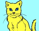 Desenho Gato pintado por Nilton27