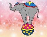 Desenho Elefante equilibrista pintado por ImShampoo