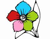 Flor 4a