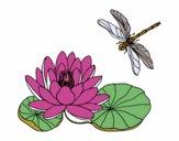Desenho Flor de lotus pintado por negrao