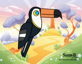 Desenho Pássaro Tucano pintado por CBarbizan