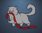 Desenho Gato com salsicha pintado por cabe