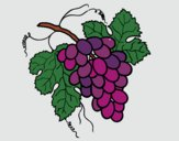 Desenho Cacho de uvas pintado por Danguinha