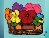 Desenho Cesta de flores 12 pintado por BrunaMad