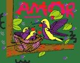 Familia colibrí