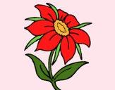 Desenho Flor silvestre pintado por JOJEJO