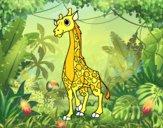 Girafa feminino