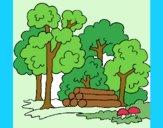 Desenho Bosque pintado por Celia50