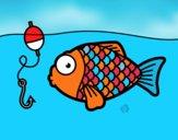 Peixe prestes a morder o anzol