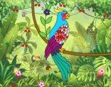 Tatuagem de papagaio